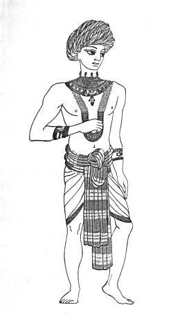 одежда для чихуа-хуа